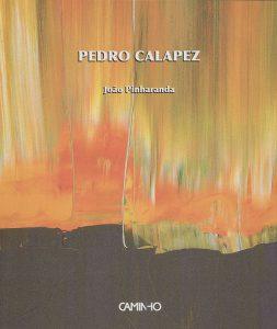 Pedro Calapez – Cada pedaço do mundo